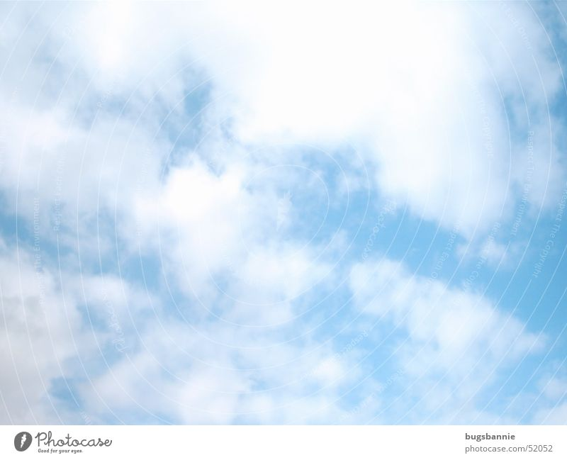 canopy Clouds Summer White Beautiful weather Sky Sun Blue Weather