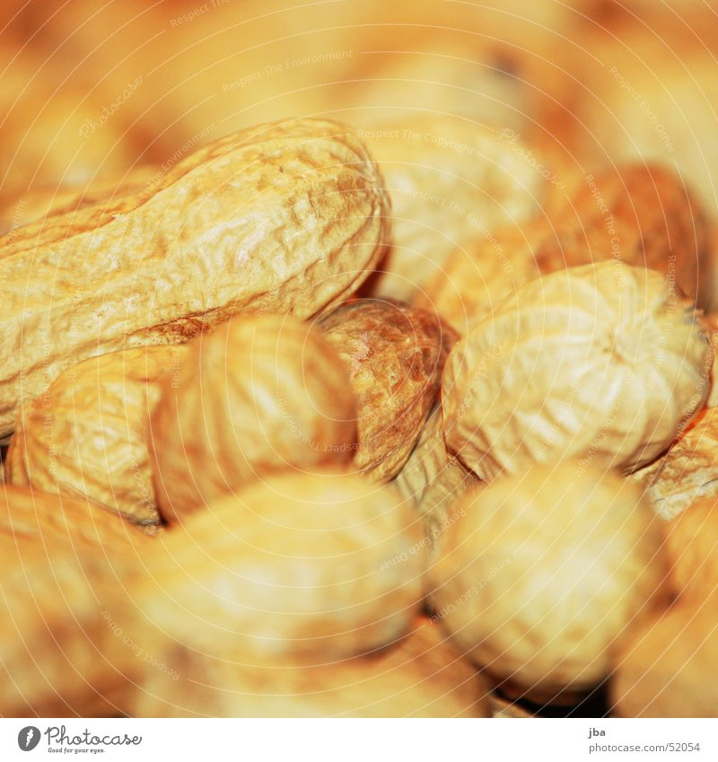 peanuts Nut Yellow Nutrition Blur spanish nuts Earth Food Macro (Extreme close-up) sharp-blurred