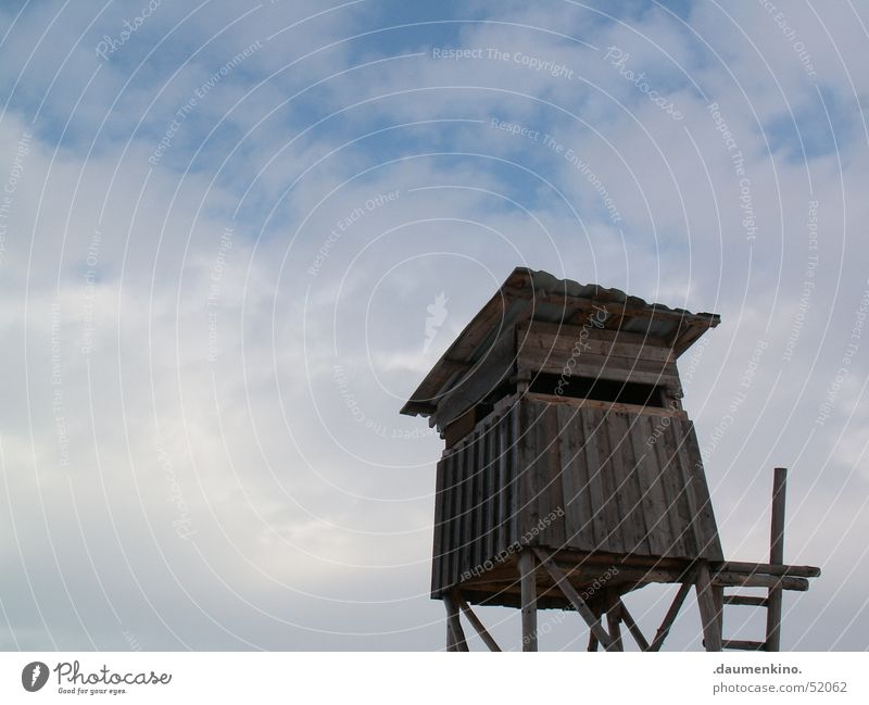lookout tower Wood Clouds Hunter Hunting Blind Roof Sky Ladder Hut Vantage point Far-off places Above Tall Wooden board Landscape Large
