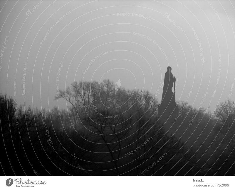 Tree Winter Loneliness Fog Hamburg Might Monument Landmark Hard Capitalism Social law