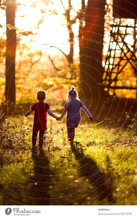 Human being Child Nature Sun Relaxation Girl Joy Forest Feminine Autumn Happy Natural Idyll Infancy Contentment Illuminate