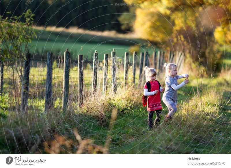 last colourful autumn day Feminine Girl Brothers and sisters Sister Infancy 2 Human being 3 - 8 years Child Environment Nature Landscape Autumn