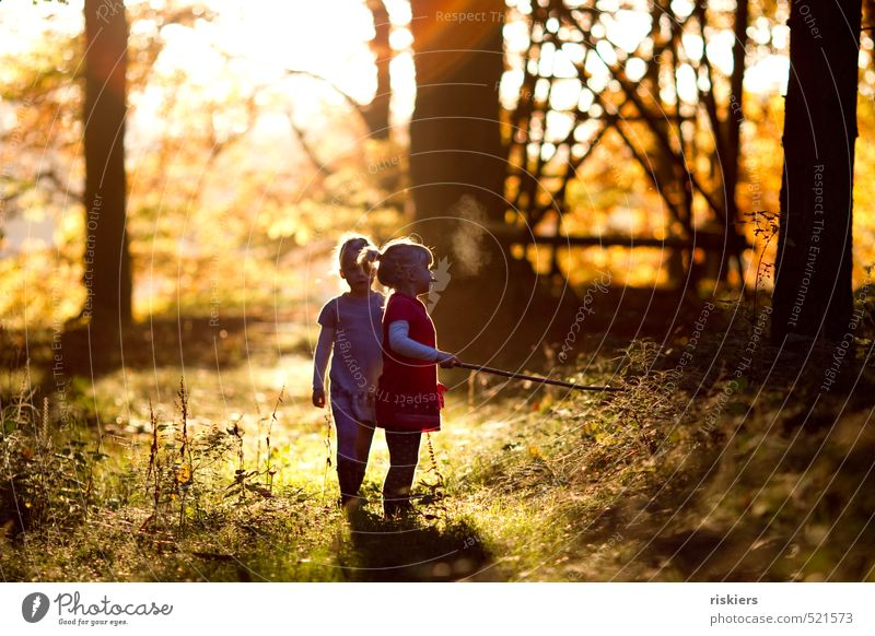 don´t think about tomorrow Human being Feminine Child Girl Brothers and sisters Sister Infancy 2 3 - 8 years Environment Nature Summer Autumn Beautiful weather
