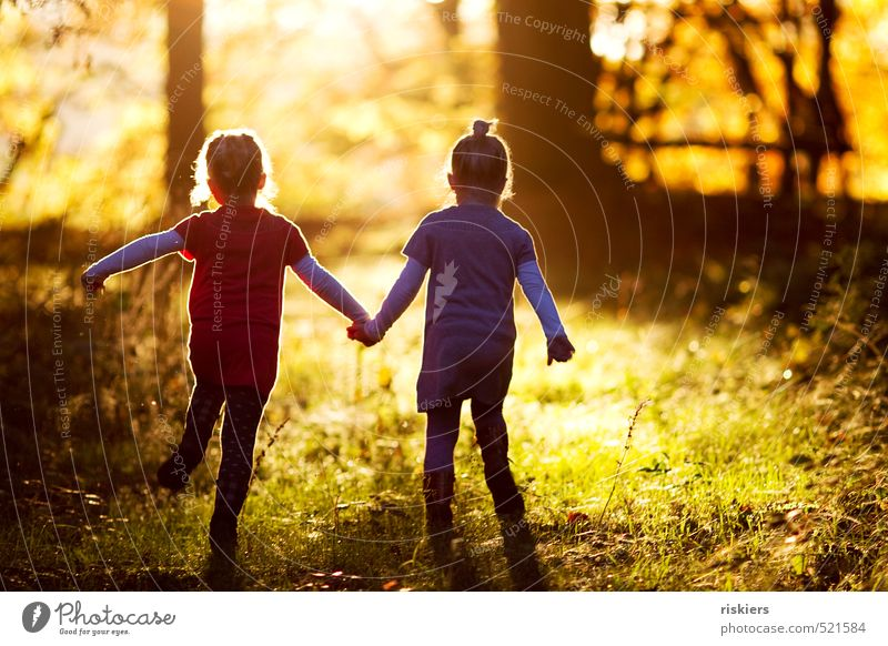 Human being Child Nature Summer Sun Landscape Girl Joy Forest Feminine Autumn Happy Natural Infancy Contentment Walking