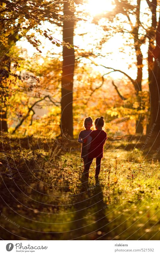 Human being Child Nature Summer Sun Girl Joy Forest Life Autumn Happy Natural Healthy Infancy Contentment Free