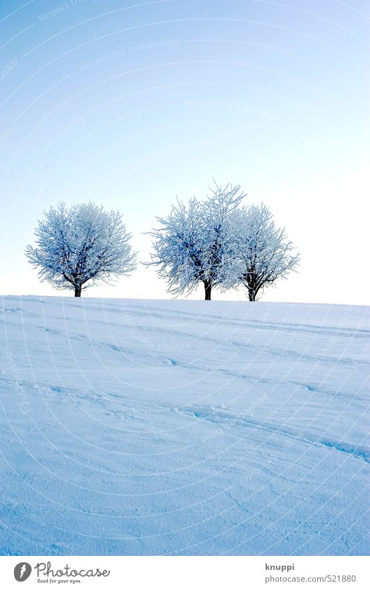 Sky Nature Blue Beautiful White Water Plant Sun Tree Landscape Winter Far-off places Black Cold Environment Mountain