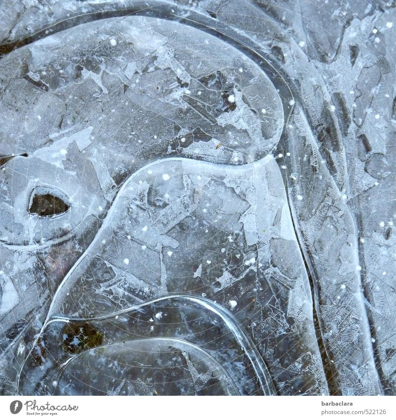 ice art Earth Winter Ice Frost Water Sign Line Structures and shapes Exceptional Firm Cold Wild Blue Esthetic Bizarre Inspiration Creativity Nature Style