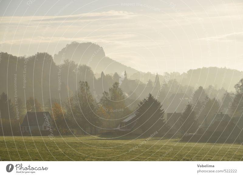 Tomorrow in the Elbe Sandstone Mountains Vacation & Travel Environment Landscape Sky Weather Fog Meadow Hill Rock Peak Thürmsdorf strupp Saxony Germany Europe