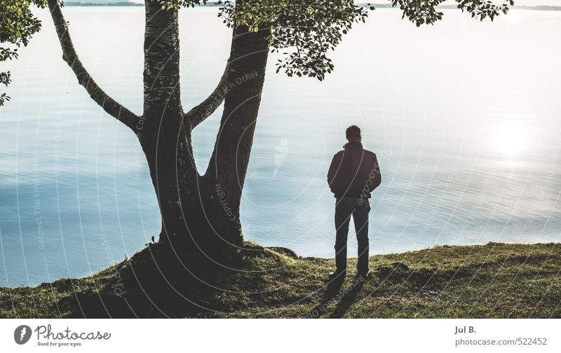 savour Young man Youth (Young adults) Body Environment Nature Landscape Tree Leaf Lake Moody Joy Colour photo Exterior shot Evening