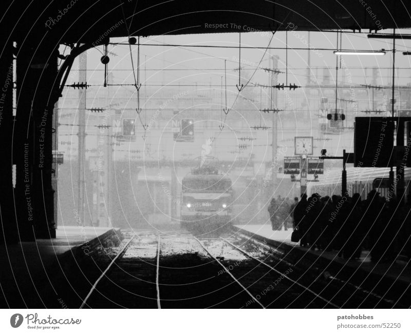 Winter Vacation & Travel Dark Cold Gray Snowfall Ice Wait Glittering Weather Time Transport Railroad Driving Logistics Railroad tracks