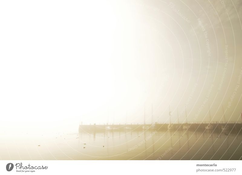 Still Environment Nature Air Water Sun Sunrise Sunset Sunlight Autumn Weather Beautiful weather Fog Lake Lake Constance Jetty Sailboat Harbour Yacht harbour