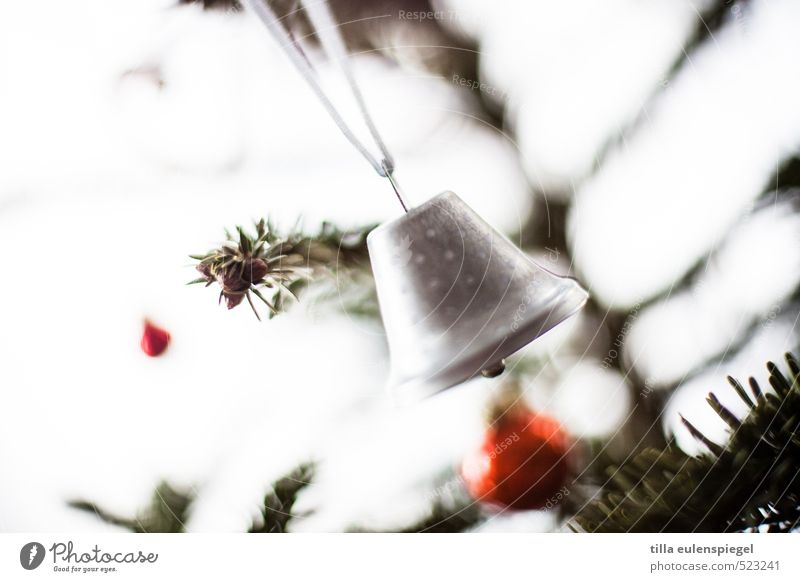 Sweeter the bells... Decoration Sphere String Movement Cold Christmas tree Christmas decoration Bell Coniferous trees Christmas & Advent Subdued colour
