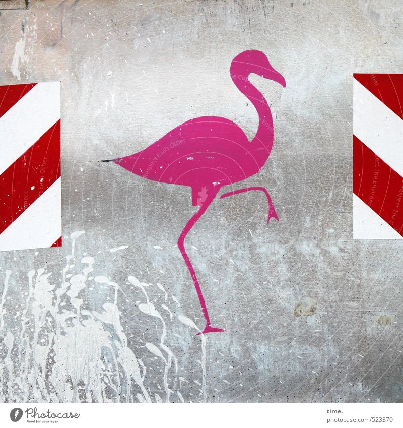 City Red Animal Graffiti Metal Pink Glittering Signs and labeling Decoration Signage Esthetic Transience Safety Construction site Plastic Athletic
