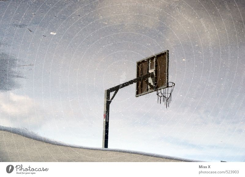 mirrors Sports Ball sports Sporting Complex Water Bad weather Rain Wet Basketball basket Playing field Puddle Colour photo Exterior shot Deserted
