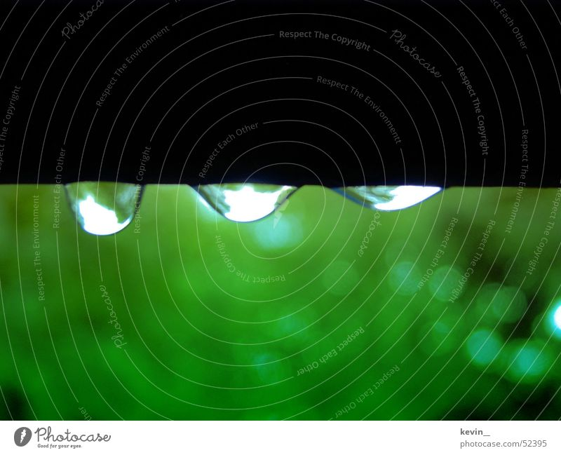 Water Green Rain Drops of water