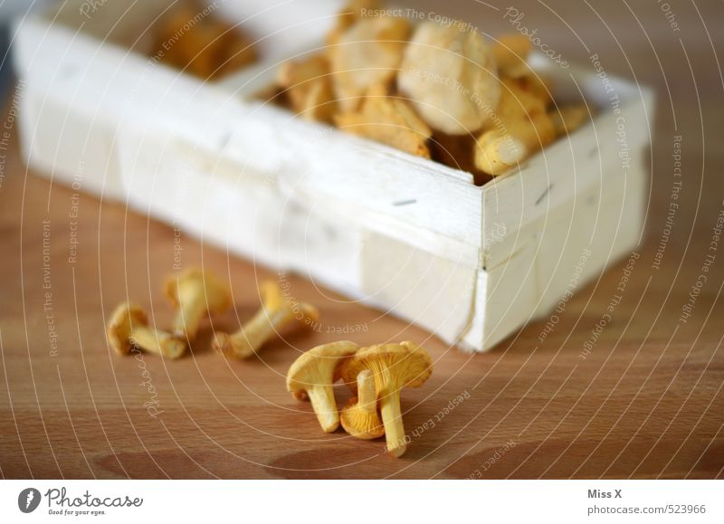 chanterelle Food Nutrition Organic produce Vegetarian diet Autumn Fresh Healthy Delicious Yellow Chanterelle Mushroom Edible Delicacy Basket Collection Meal