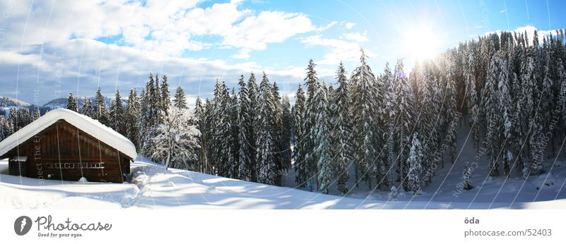 Tree Sun Winter Forest Cold Snow Large Hut Panorama (Format) Alpine pasture Deep snow