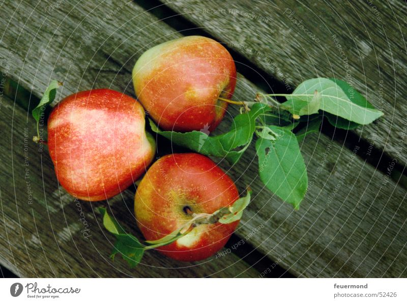 The three apples Leaf Wood Wooden board Red Green 3 Apple Fruit timber