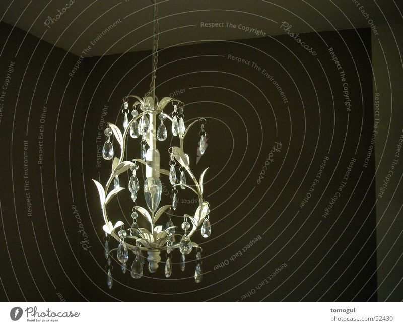 Lamp Room Lighting Chandelier Ornamental