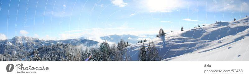 Sky Tree Sun Winter Forest Cold Snow Large Panorama (Format) Alpine pasture Deep snow