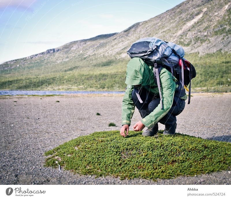 Human being Nature Youth (Young adults) Landscape Young woman Calm Beach Mountain Life Happy Climate Hiking Island Elements Contact Hunting