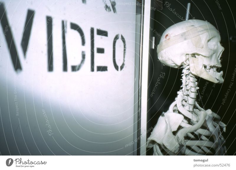 I see what you don't see. Skeleton Video Death's head Grinning gabba gabba hey