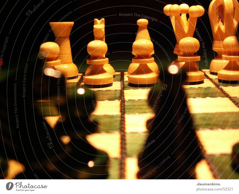 Finely dressed up Chess piece Chessboard Wood Square Lady Checkered Green White Black Dark Light Evil Duel Playing Classification Beginning Horse Planning