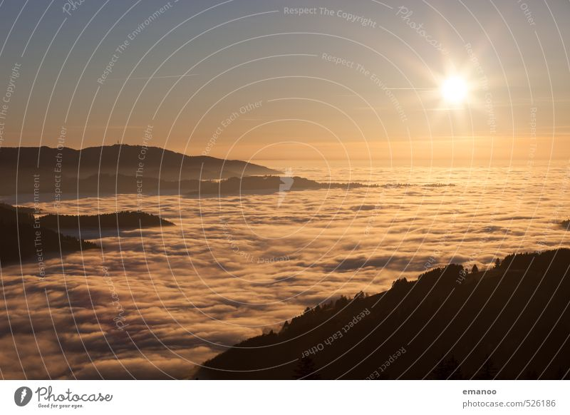 Inversion Sun Vacation & Travel Trip Mountain Hiking Nature Landscape Air Sky Clouds Horizon Autumn Climate Weather Fog Forest Hill Peak Tall Soft Yellow