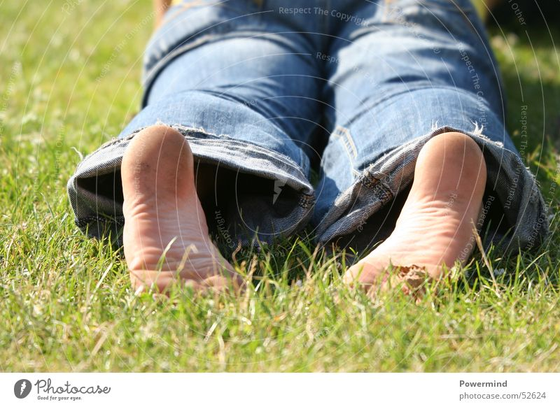 Sun Green Vacation & Travel Calm Relaxation Meadow Feet Warmth Perspective Jeans Lawn Lie Leisure and hobbies Physics