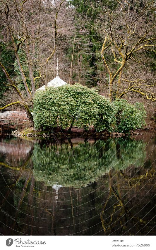 Nature Beautiful Water Plant Tree Landscape Calm Forest Environment Autumn Moody Idyll Bushes Trip Simple Lakeside