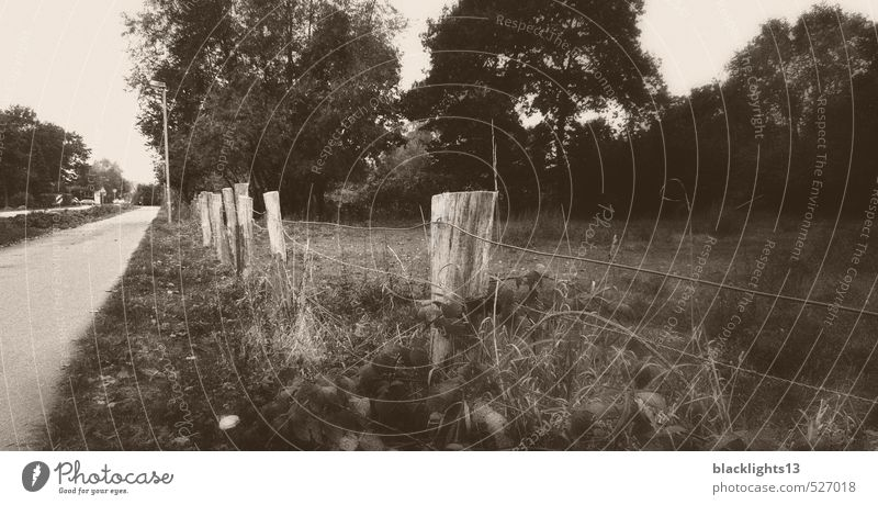 roadside fence Black & white photo Fence Landscape Street Old Abstract Nature Gray Tree Sadness Art Deserted Grass Joist Wire fence Pasture Photography