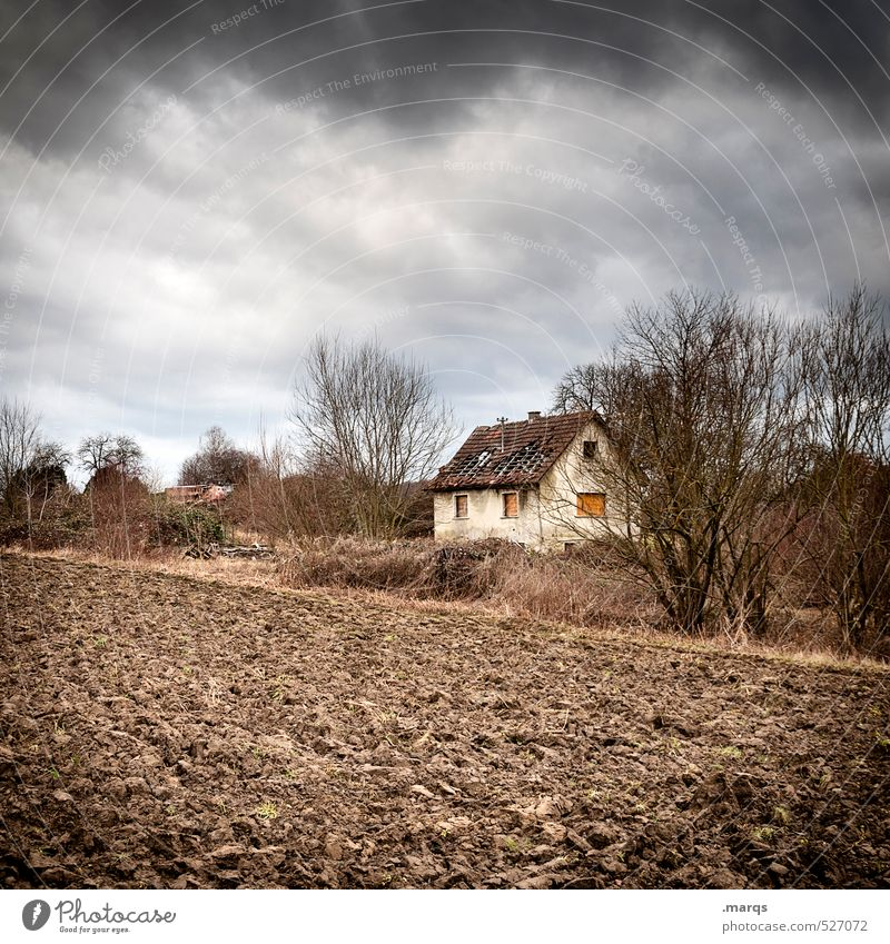Sky Nature Old Tree Landscape House (Residential Structure) Dark Environment Autumn Moody Field Lifestyle Bushes Climate Elements Change