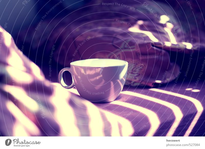 Good morning To have a coffee Moody Arise Coffee To enjoy Relaxation Colour photo Morning Day Light Shadow Sunlight