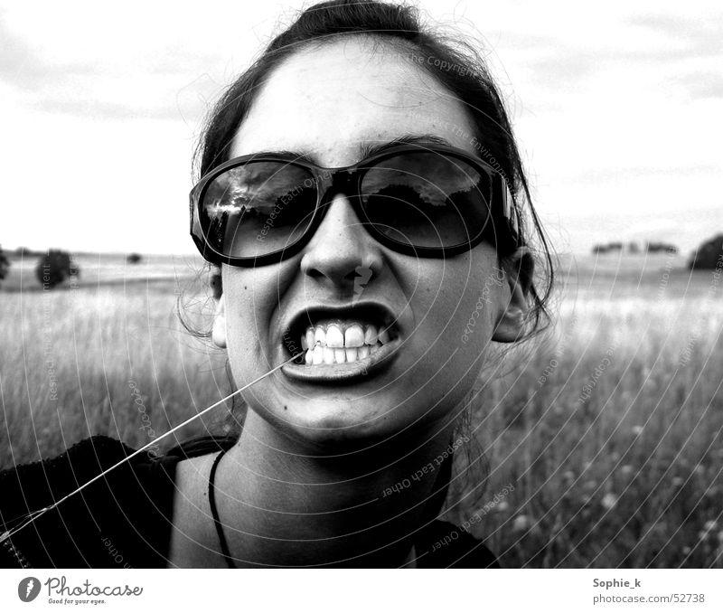 snarl Grass Sunglasses Summer Meadow Teeth