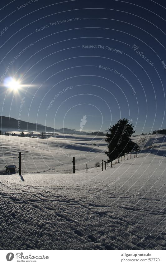 king's winter Königswinkel valley Allgäu Roßhaupten Ostallgäu district Winter Dream landscape feet Snow Sun