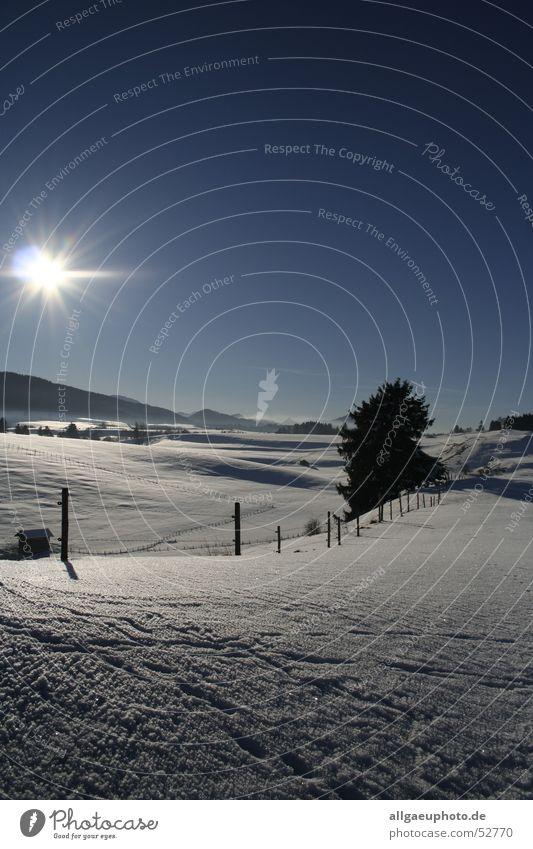 Sun Winter Snow Allgäu Dream landscape Roßhaupten Königswinkel valley Ostallgäu district