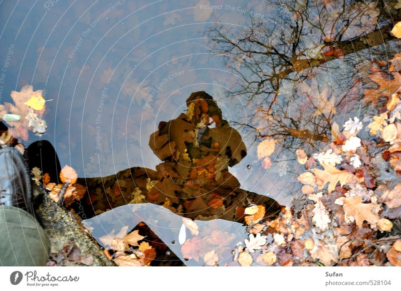 autumn mirror Leisure and hobbies Take a photo Mirror Camera Masculine Man Adults 1 Human being 60 years and older Senior citizen Water Autumn Beautiful weather