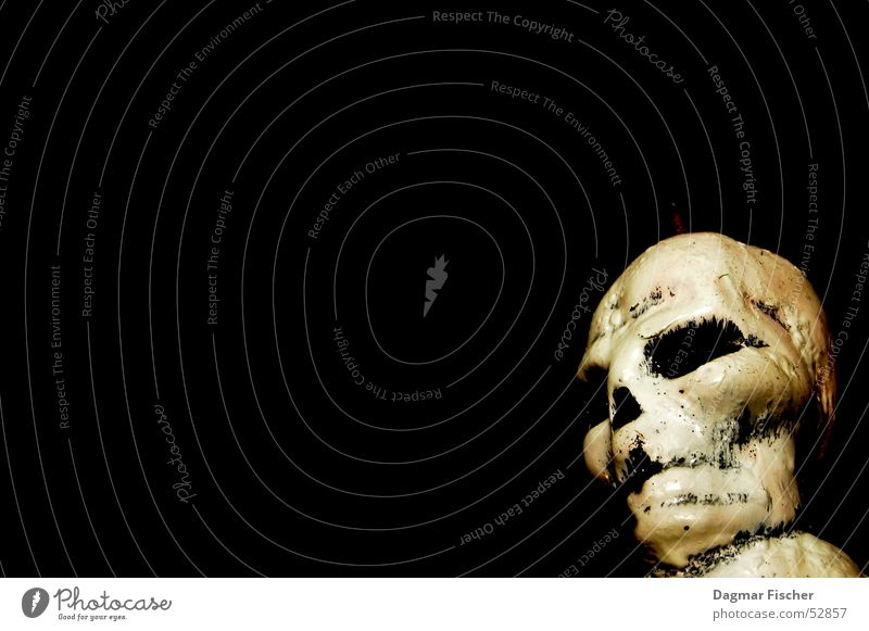 Human being White Black Death Head Fear Dangerous Threat Grief Candle Creepy Distress Punk Cemetery Hallowe'en Skeleton