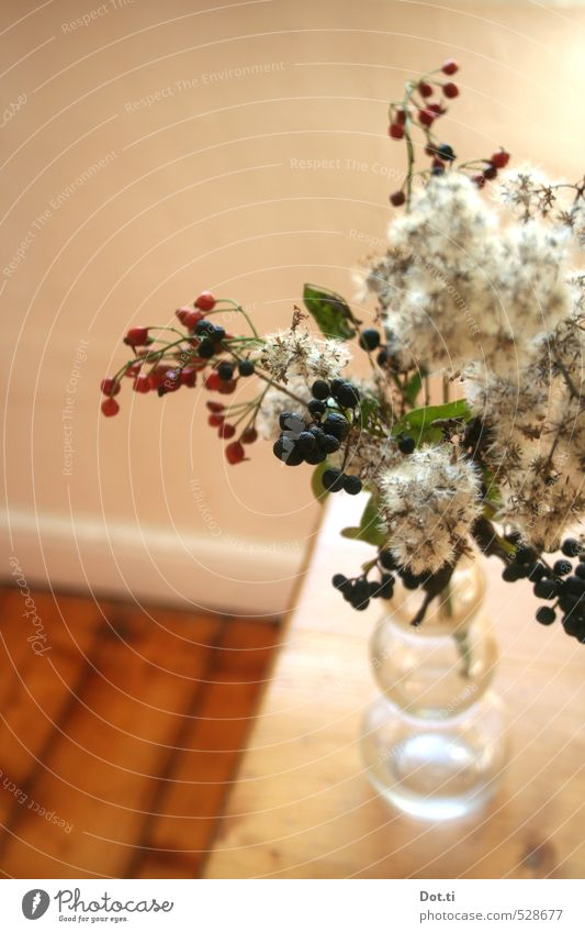 autumn again Living or residing Flat (apartment) Table Autumn Plant Decoration Wood Moody Berries Twigs and branches Rose hip Vase Wild plant Autumnal Arranged