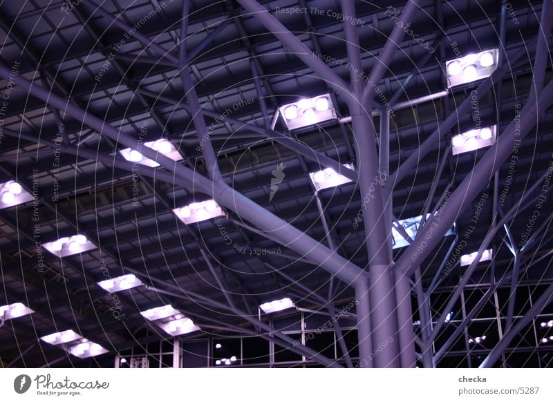 airport stugg Tree Tree structure Stuttgart Architecture Light Modern Airport