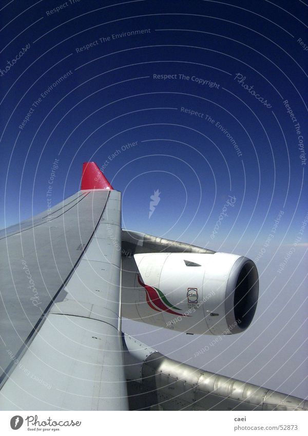 Sky Blue Vacation & Travel Clouds Far-off places Air Airplane Flying Horizon Aviation Logistics Wing Engines