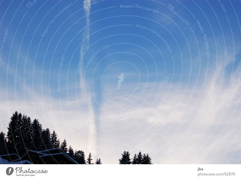 vapour trails Air Airplane White Progress Forest House (Residential Structure) Fir tree Clouds Sky Blue Snow Contrast Flying
