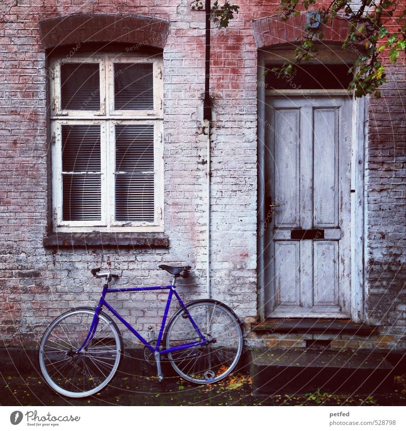 Blue Old House (Residential Structure) Black Window Wall (building) Wall (barrier) Brown Facade Flat (apartment) Door Living or residing Bicycle Poverty Cute