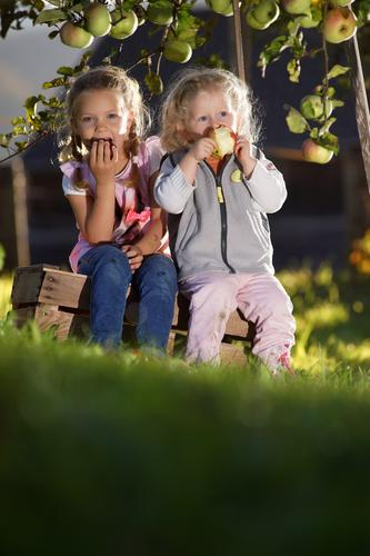 Human being Child Nature Girl Feminine Autumn Healthy Eating Garden Food Fruit Infancy Appetite Apple Toddler