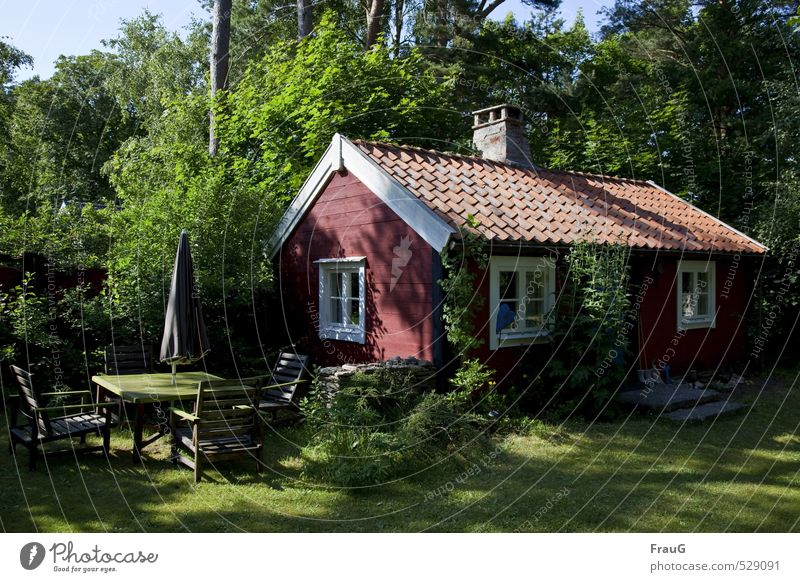 Nature Vacation & Travel Old Beautiful Summer Tree Relaxation Red Calm House (Residential Structure) Window Garden Living or residing Bushes Beautiful weather