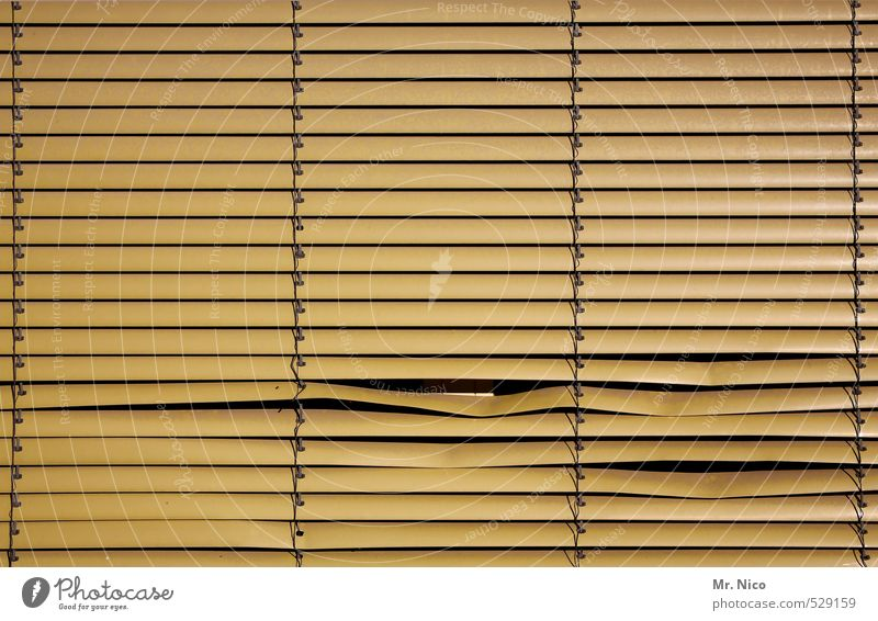 risk your gaze? Lifestyle Living or residing Flat (apartment) House (Residential Structure) Room Building Window Observe Yellow Safety Protection Roller blind
