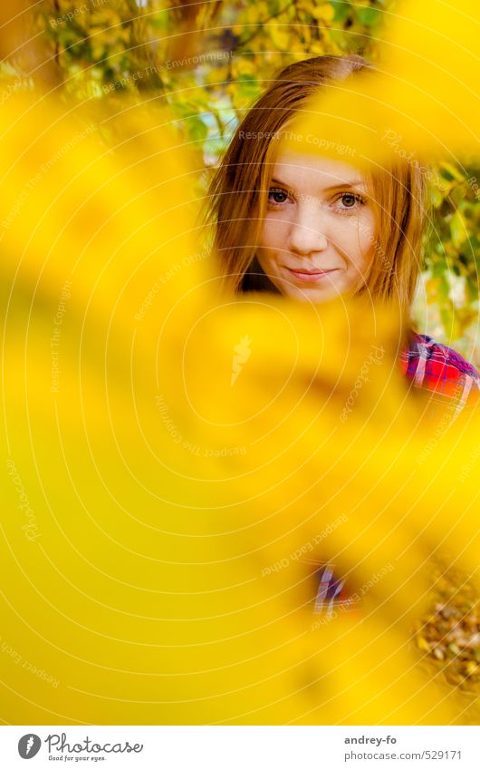 Autumn Portrait Feminine Young woman Youth (Young adults) Woman Adults Head Face 1 Human being 13 - 18 years Child 18 - 30 years Leaf Red-haired Looking