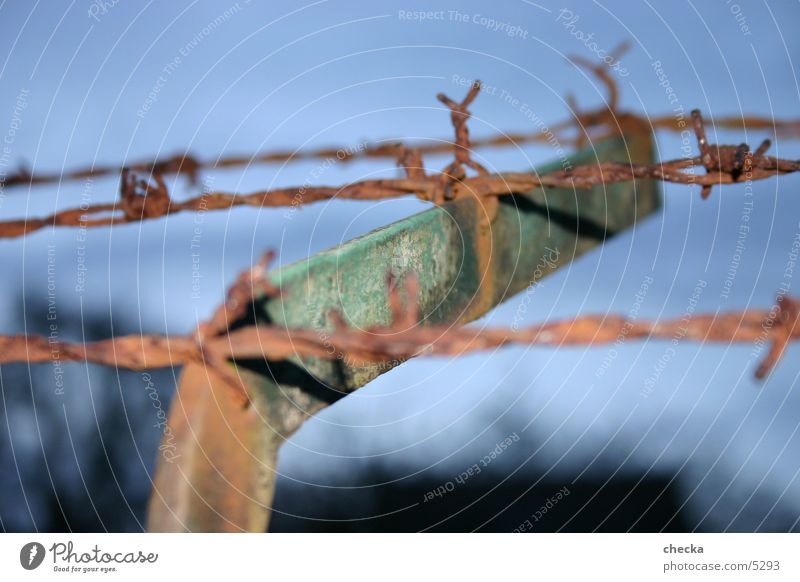 barbed wire fence Fence Wire Barbed wire Border Industry Rust