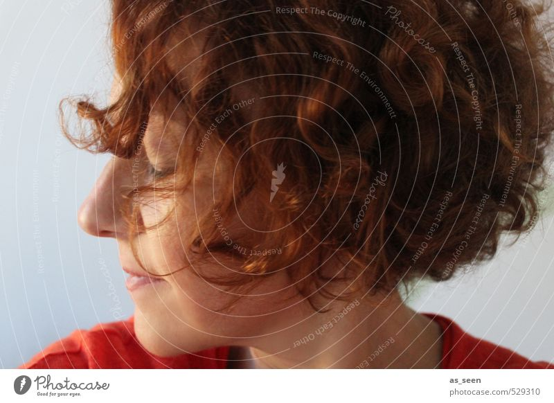 The inner voice Feminine Woman Adults 1 Human being 30 - 45 years Hair and hairstyles Red-haired Curl To enjoy Authentic Natural Brown Gray Orange Emotions