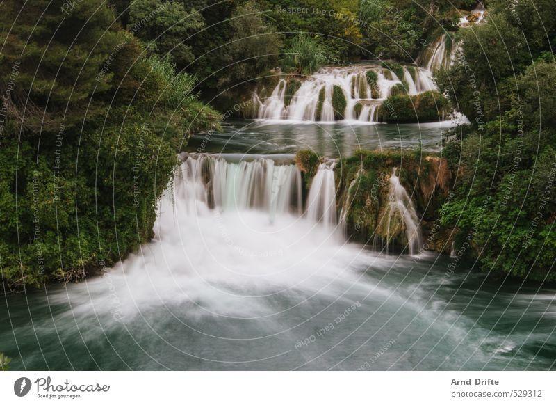 All flows... Summer vacation Beach Beautiful weather Warmth Waterfall Hot Croatia Romance Flow River Green Dalmatia National Park Krka Tree Lakeside